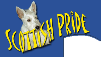 Scottish-Pride